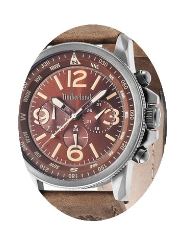 Timberland Watches Men's Campton 13910JS...