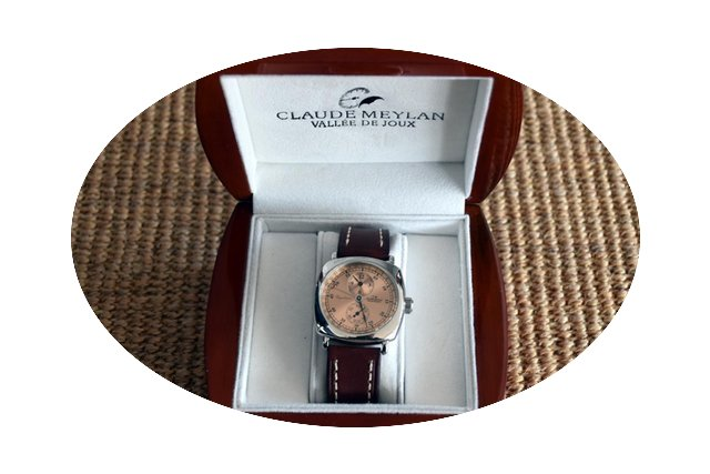Claude Meylan Regulator...
